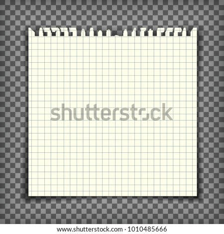 Mock up of a blank square checkered note book page with torn edge. Vector illustration