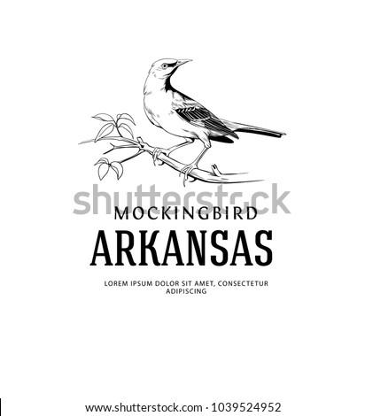 Mockingbird Vintage Logo. Arkansas State Bird