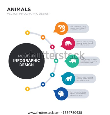 modern business infographic illustration design contains rat, panda, rhino, rhinoceros, salamander simple vector icons. set of 5 isolated filled icons. editable sign and symbols