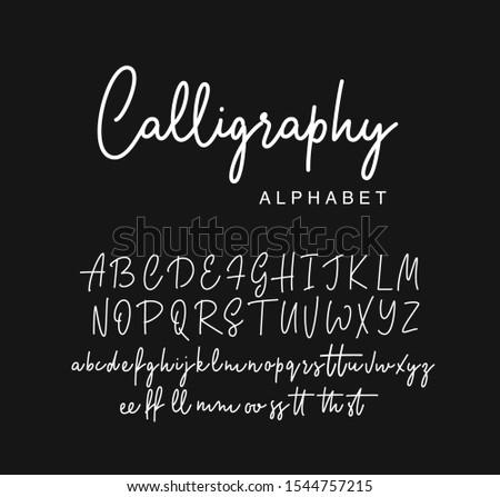 Modern calligraphy alphabet. Vector script. Foto d'archivio ©