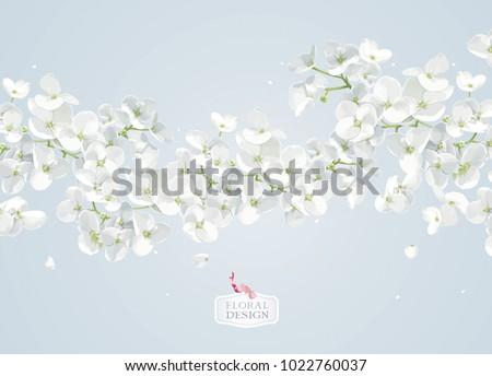 modern floral vector  art