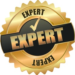 modern gold expert vector eps10 badge sign
