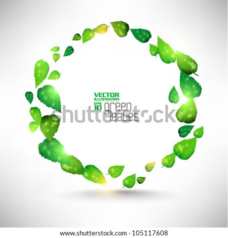 modern green fresh leaves vector design