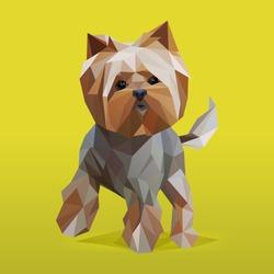 Modern lowpoly (low polygonal) portrait of Yorkshire Terrier dog. Trendy illustration