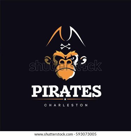 Modern vector professional sign logo pirates