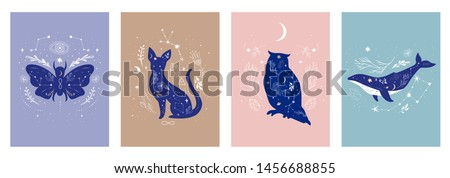 Modern witchcraft and mystic animals. Collection of mystical and magical, astrology illustrations, cards and posters. Stars, constellations, moon, crystals. Flat vector illustration.