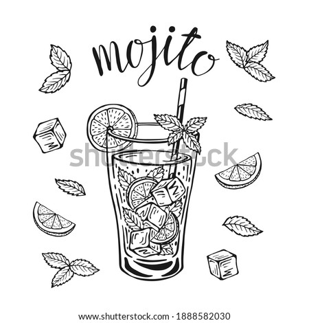 Mojito classic cocktail hand drawn vector illustration. Lemonade glass with ice and a slice of lime and a straw and mint leaves, for cocktail cards. Homemade mojito lettering, isolated illustration.