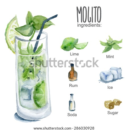 mojito with ingredients vector