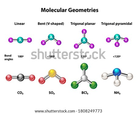 Molecular geometries in linear, bent, trigonal planar and pyramidal structures. Models and example elements, carbon dioxide, sulfur dioxide, boron trichloride, and ammonia. Stok fotoğraf ©