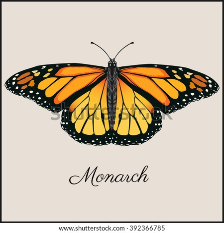 monarch butterfly card flat