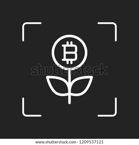 money flower with bitcoin