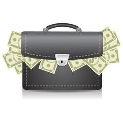 Money in suitcase vector