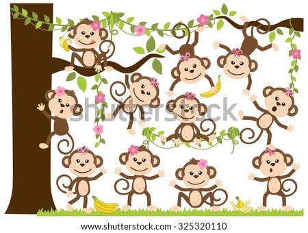 Monkey Girls