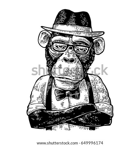 Monkey hipster with paws crossed in hat, shirt, glasses and bow tie. Vintage black engraving illustration for poster. Isolated on white background