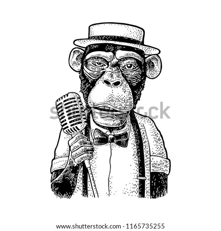Monkey holding microphone. Vintage black engraving illustration. Isolated on white background. Hand drawn design element for poster