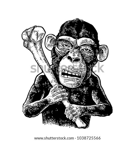 Monkey holding tibia. Vintage black engraving illustration for poster and t-shirt design. Isolated on white background.