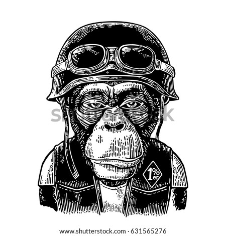 Monkey in the motorcycle helmet and glasses. Hell monkeys and 1% lettering on the waistcoat. Vintage black engraving illustration. Isolated on white background.
