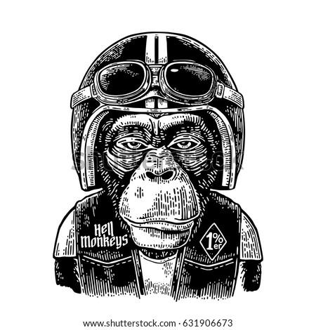 monkey in the motorcycle helmet ...
