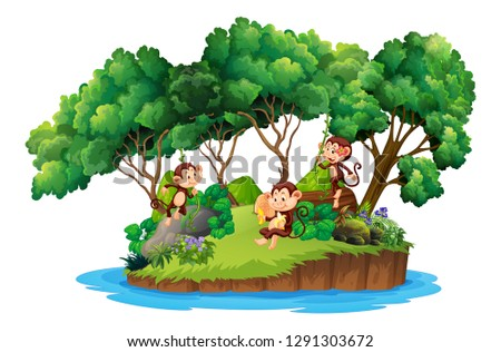 monkey on isolated island