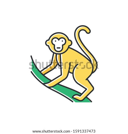 monkey on liana color icon