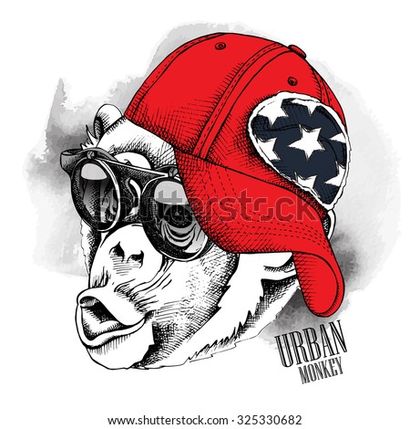 monkey portrait in a red cap