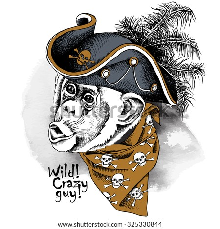 monkey portrait in gray pirate