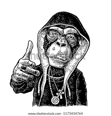monkey rapper dressed in the