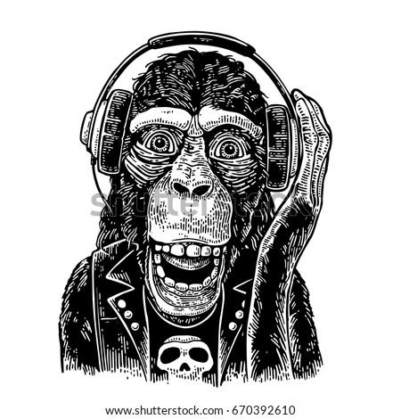 monkey rocker in headphones and
