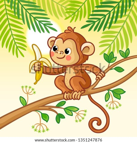 monkey sits on a tree and eats