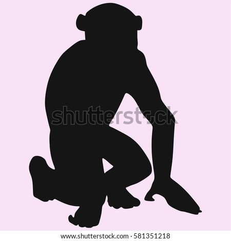 monkey, Sitting chimpanzee looks vector silhouette isolated