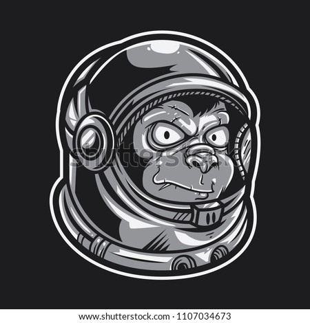 monkey wearing astronaut helmet