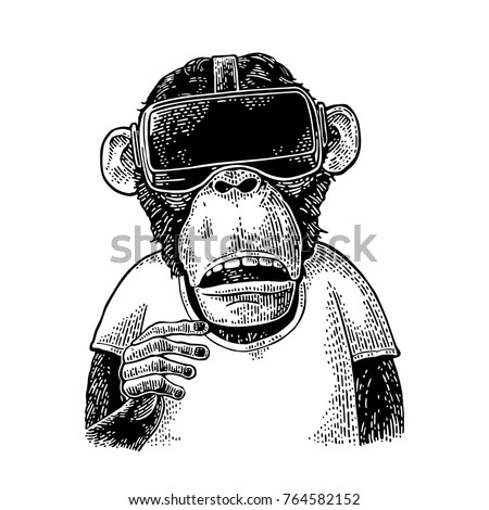 Monkey wearing virtual reality headset and t-shirt. Vintage black engraving illustration for poster. Isolated on white background