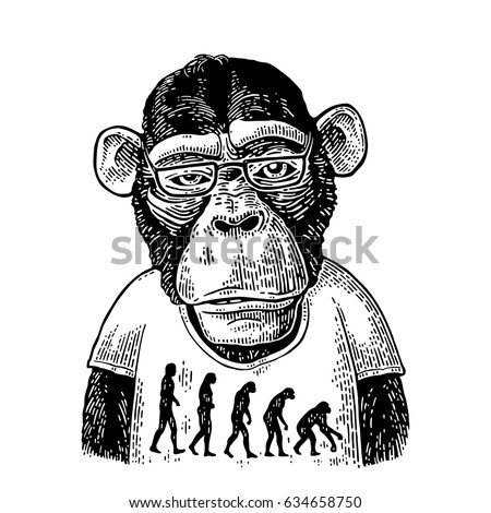 monkeys dressed in human t...