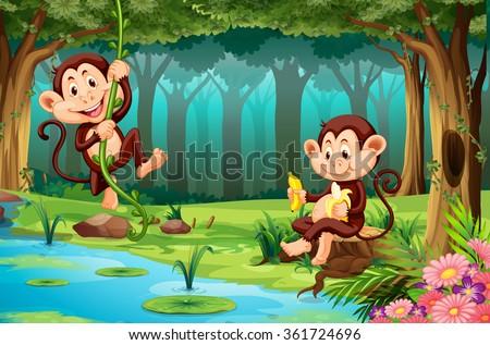 stock vector monkeys living in the jungle illustration 361724696 - Каталог — Фотообои «Для детской»