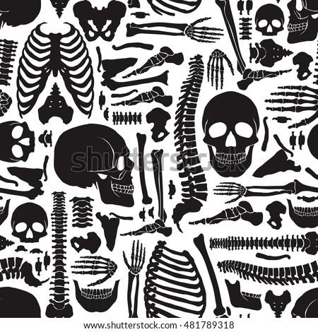 monochrome human skeleton