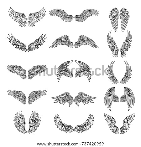 Monochrome illustrations set of different stylized wings for logos or labels design projects. Vector pictures set of line wings bird or angel