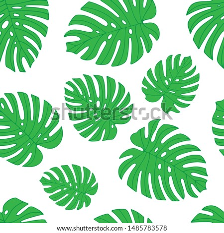 Monstera.  Monstera leaves seamless pattern. Endless floral background. Part of set.