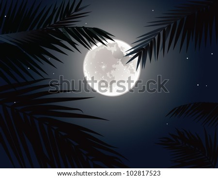 Moon in tropics. The picture of the moon and palm tree branches silhouettes.
