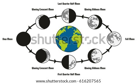 moon life cycle diagram