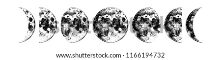 moon phases hand drawn vector