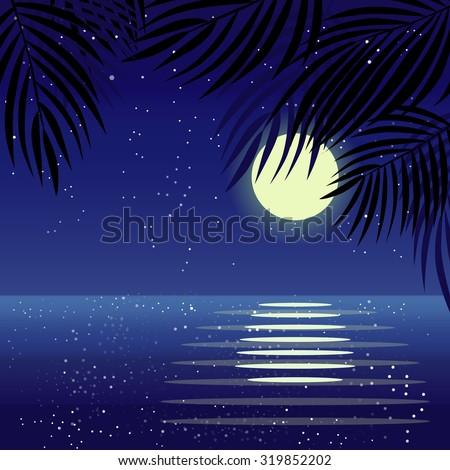 moonlight beach summer