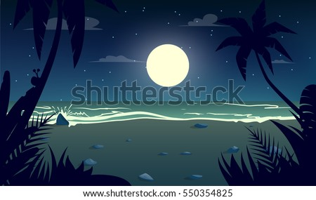 moonlight night at the beach