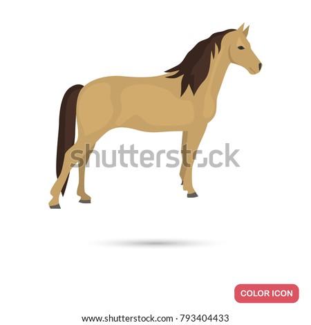 morgan horse color flat icon