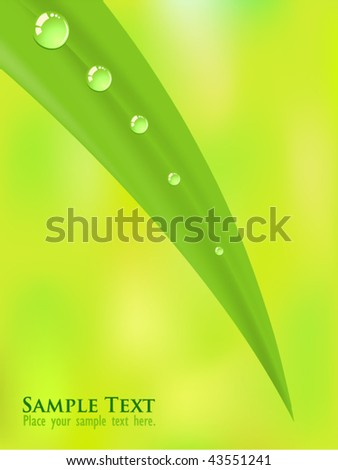 Morning Dews - stock vector