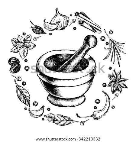 Mortar and pestle in a wreath of spices and herbs, hand-drawn vector illustration ストックフォト ©