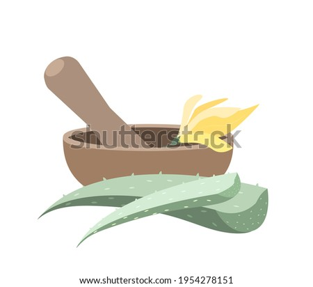 Mortar and Pestle set for mixing herbs,Aloe Vera,Champaka Flowers Essence.Grinding fresh Plants in bowl.Prepare Organic Lotion with Natural Ingredients.Vector illustration isolated on white background Stok fotoğraf ©