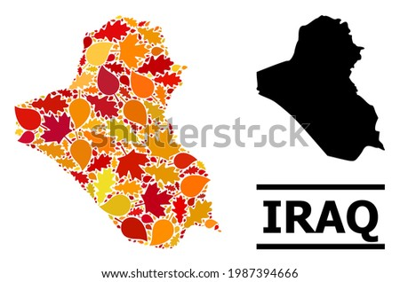 Mosaic autumn leaves and solid map of Iraq. Vector map of Iraq is done with randomized autumn maple and oak leaves. Abstract geographic scheme in bright gold, red, brown colors for map of Iraq.