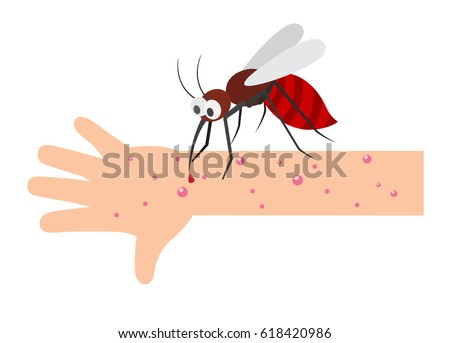 Mosquito bite.vector illustration.