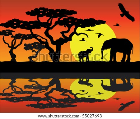 mother elephant and baby elephant in africa near water