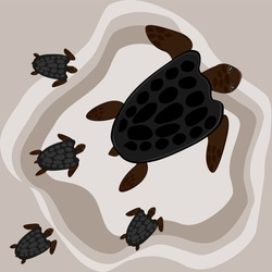 mother turtle baby walking on the beach brown vector illustration marine animals amphibians